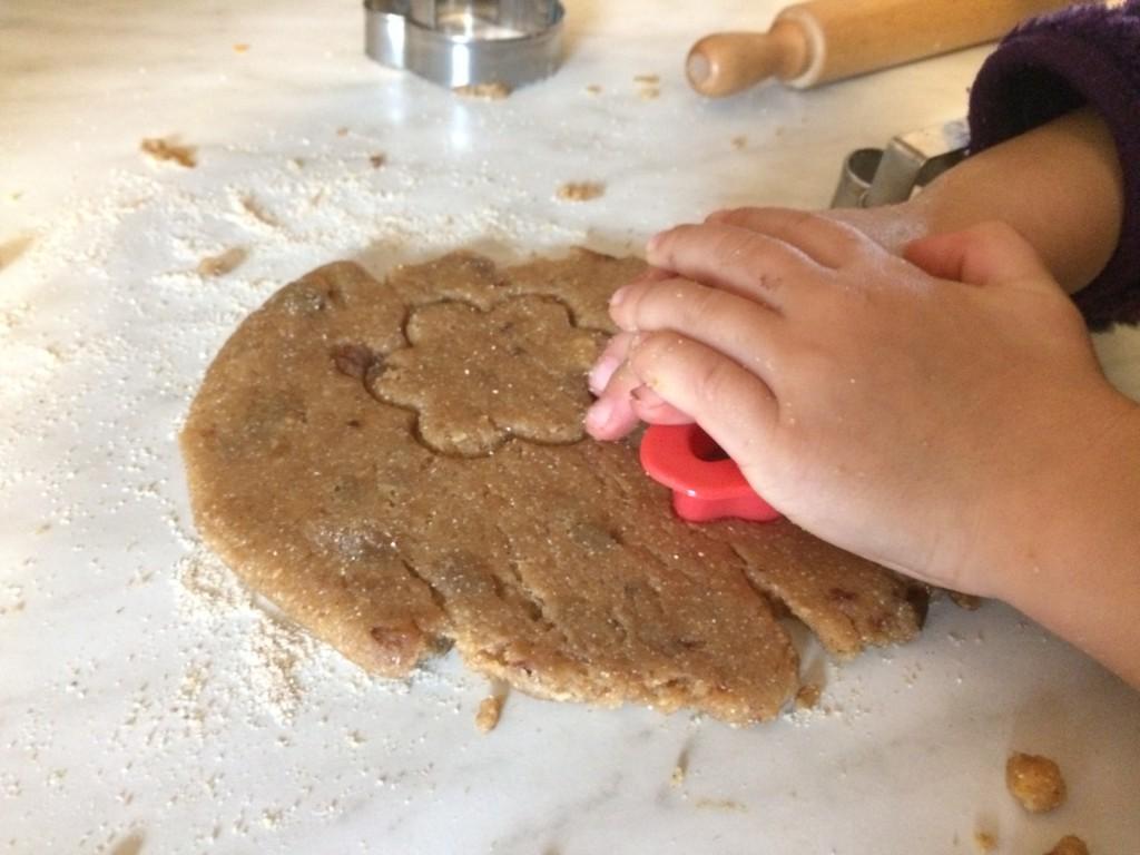 Biscotti alla Nocciola (vegani)