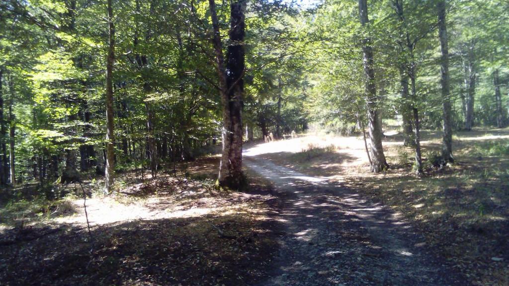 il sentiero che porta Nicola e Fela a Sapri saltando le statali