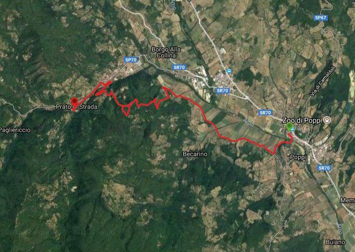 Questa è la strada percorsa da Nicola e Fela tra Poppi-Prato di Strada